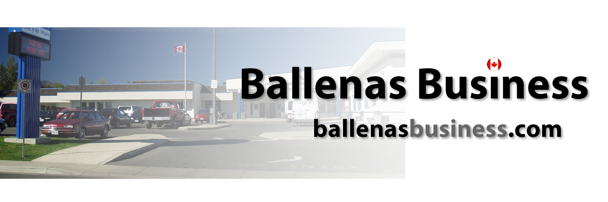 Ballenas Business Education